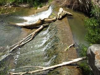Pesca en un río