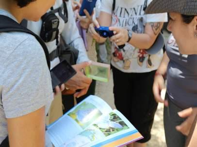 Diputación actividades sensibilización mariposas taller gran senda
