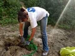Miles de voluntarios participan en proyectos de SEO/BirdLife
