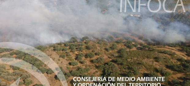 Incendio forestal en El Garrobo (Sevilla)