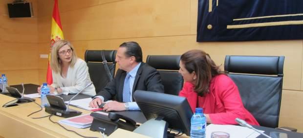 Mario Amilivia comparece en las Cortes