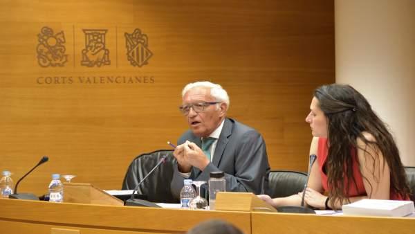 L'exsindic de Comptes diu que no van trobar cap irregularitat greu en Ciegsa però sí sobrecostos poc justificats