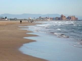 Desalojan la playa de La Patacona por la presencia de un tiburón de metro y medio