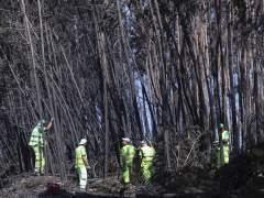 Las incógnitas sin resolver del devastador incendio de Portugal