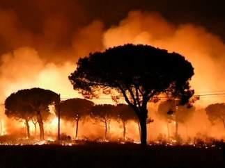 Noche en llamas cerca de Doñana