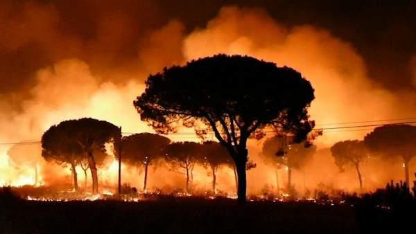 El incendio de Moguer alcanza Doñana