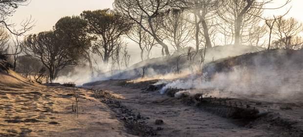 Incendio Doñana, Cuesta Maneli