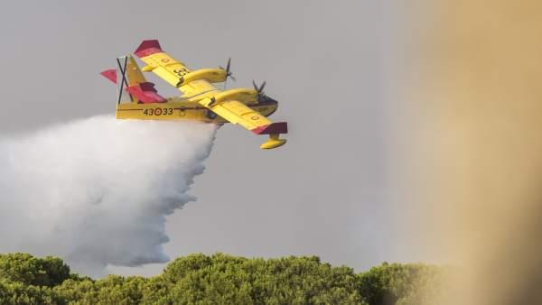 Incendio de Moguer (Huelva), Doñana