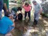 Liberación de 5.000 ejemplares de trucha común en el río Guadalentín.