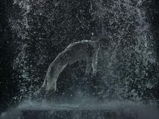 La ascensión de Tristán (El sonido de una montaña bajo una cascada), 2005
