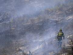El fuego quema casi 100.000 hectáreas en 2017