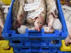 Pesca en Reino Unido