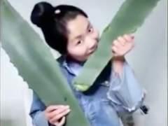 'Vlogger' china