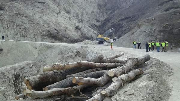 Trabajos en la zona afectada por el incendio de Quesada (Archivo).