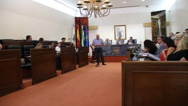 Lectura de la declaración institucional en el pleno de Diputación.