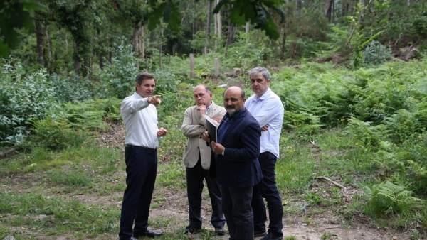 Os Socialistas Propoñen Levar A Toda Galicia O Plan De Prevención De Lumes Con E