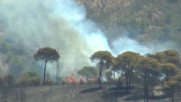 El incendio de Riotinto evoluciona 'según lo previsto'
