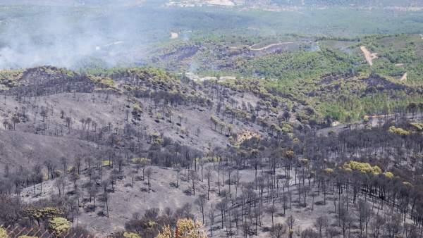 Incendio forestal en Riotinto