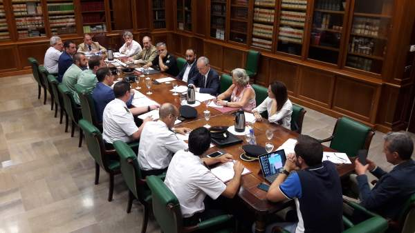 Junta local seguridad verano 2017 málaga subdelegación