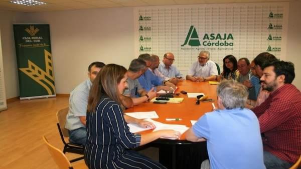 Responsables de Asaja, COAG, UGT y CCOO, durante la firma