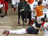 Protección ante el toro