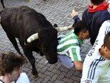 Empujado por el toro