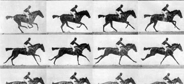Caballo, Eadweard Muybridge