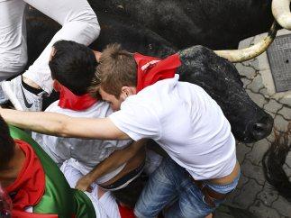 El toro en el cuello
