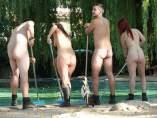 Zoo de Londres, desnudos, tigre