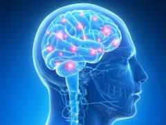 La educación y el estado ánimo influyen en el envejecimiento cerebral