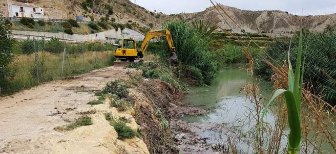 La CHS recupera el cauce del río Segura y elimina las cañas