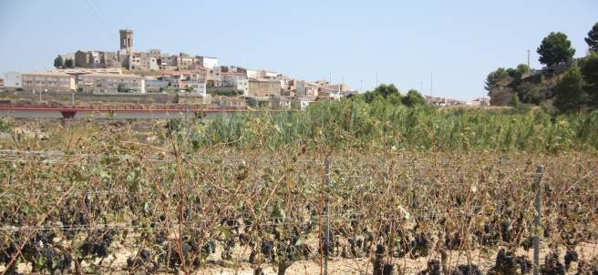 Batea, Tarragona.