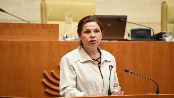 Pilar Blanco-Morales, en su comparecencia en el Pleno