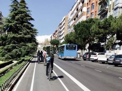 Carril bici de la Calle Toledo