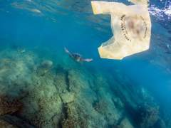 España debe reducir un 25% las bolsas de plástico hasta 2019