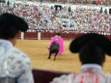 Plaza toros la malagueta diputación