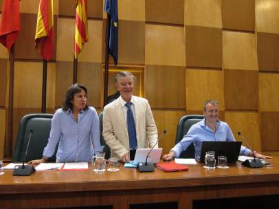 El Ayuntamiento celebra pleno