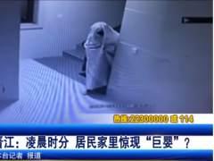 Fantasma chino, ladrón