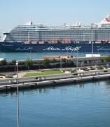 Cruceros en el puerto de València