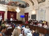 Pleno de Málaga. Junio de 2017
