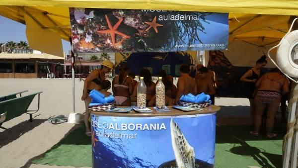 Jornadas del mar cuida tus playas aula del ayuntamiento málaga