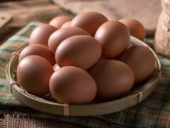 Francia prohibirá la venta de huevos criados en jaulas a partir de 2022