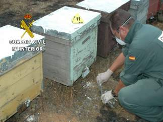 Imagen del Guardia Civil que investiga los incendios en Zamora