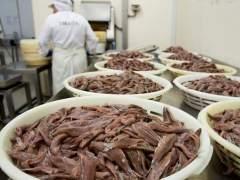 De producto de desecho a ingrediente fetiche en la cocina española
