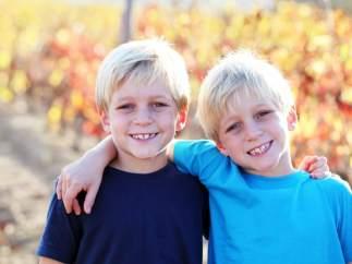 Aunque los gemelos idénticos comparten placenta, uno puede ser más sano que otro.