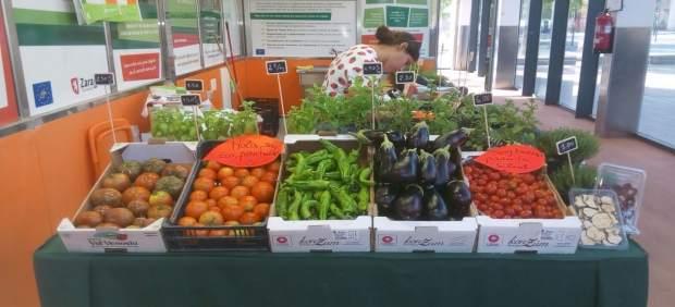 Mercado Agroceológico de Valdespartera