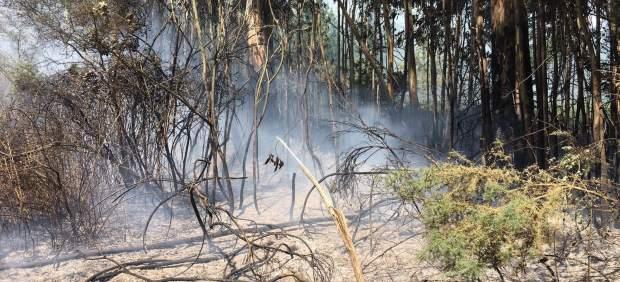 Ordes incendios forestales