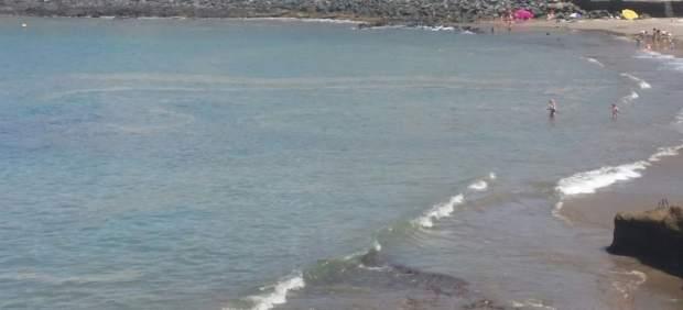 Playa con microalgas
