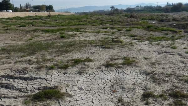 Imagen de archivo que muestra un campo seco