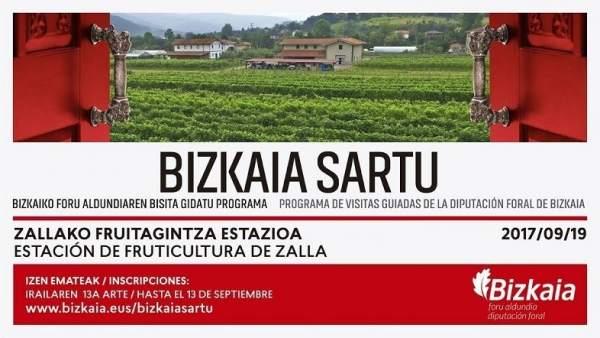 Cartel del programa Bizkaia Sartu